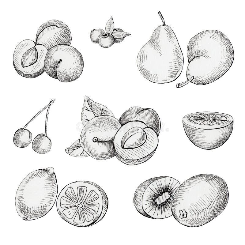 Reeks vruchten royalty-vrije illustratie