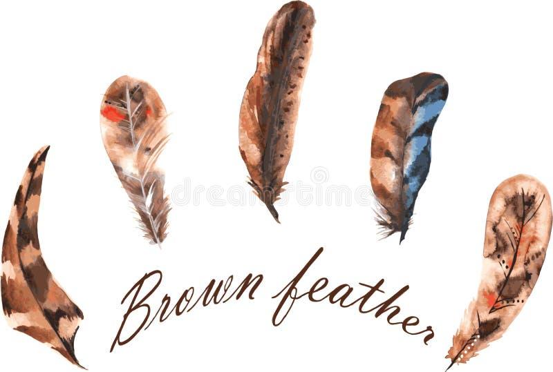 Reeks waterverf bruine veren vector illustratie
