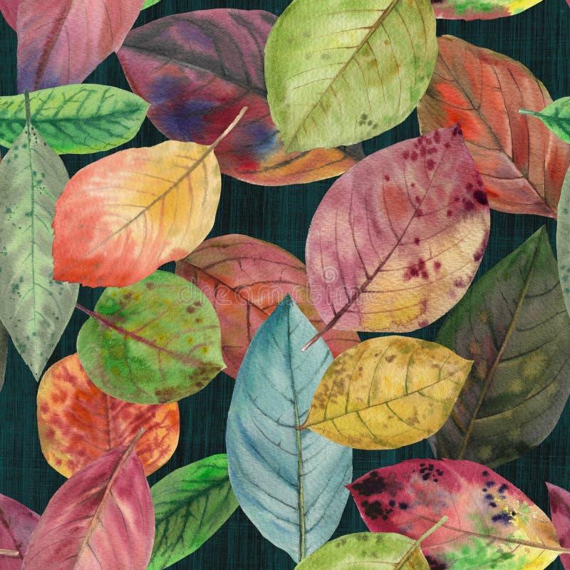 Reeks waterverfbladeren Naadloos patroon vector illustratie