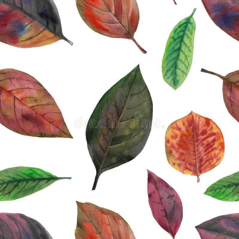 Reeks waterverfbladeren Naadloos patroon stock illustratie