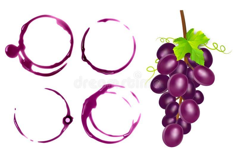 Reeks wijnvlekken, cirkels op witte achtergrond worden geïsoleerd die Wijntextuur met vorm van cirkels, vectorillustratie vector illustratie