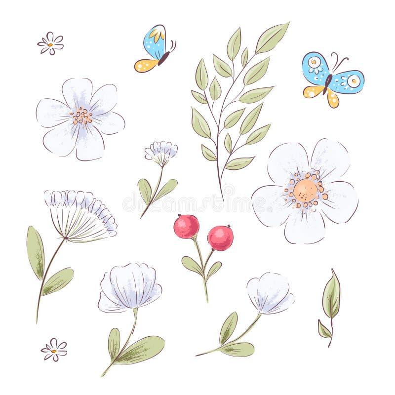 Reeks wildflowers en vlinders De tekening van de hand Vector illustratie royalty-vrije illustratie