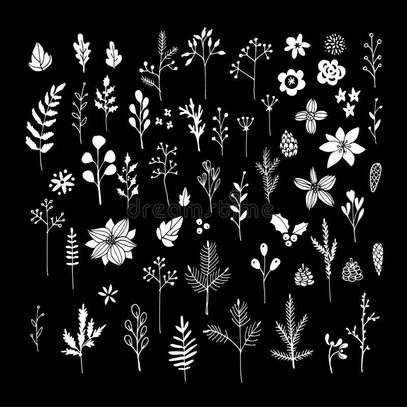 Reeks witte krijtbloemen, bladeren en takken op bord Kerstmis bloemenelementen Getrokken hand stock illustratie