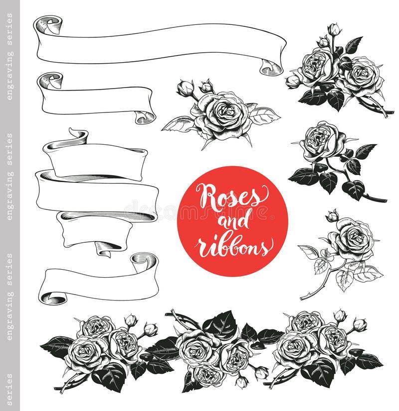 Reeks witte rozen en linten in uitstekende gravurestijl royalty-vrije illustratie