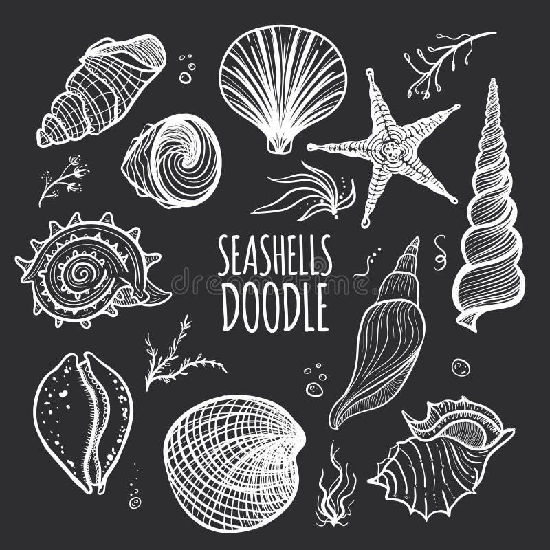 Reeks witte zeeschelpen op zwarte achtergrond stock illustratie