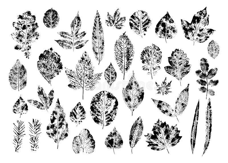 Reeks zegel verschillende bladeren vector illustratie