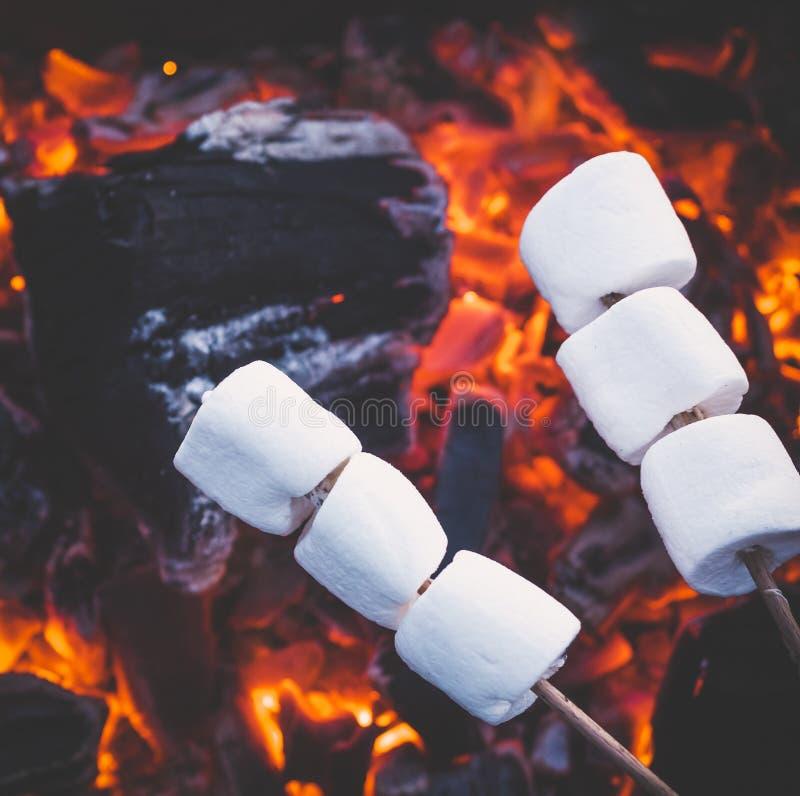 Reeks zoete heemst die over rode brandvlammen roosteren Heemst op vleespennen die op houtskool worden geroosterd stock foto's