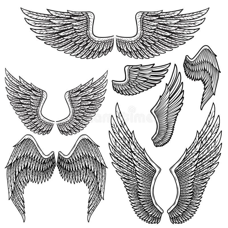 Reeks zwart-wit vogelvleugels van verschillende vorm in open positie stock illustratie