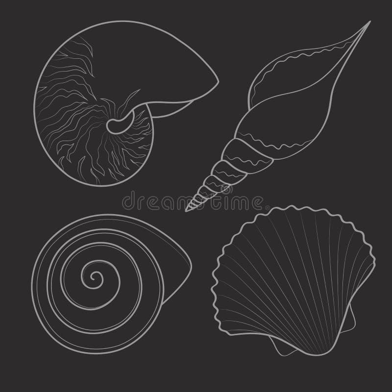 Reeks zwarte & witte grafische overzeese shells voorwerpen stock illustratie