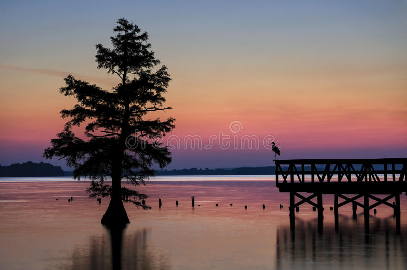 Reelfoot湖田纳西国家公园 免版税库存图片