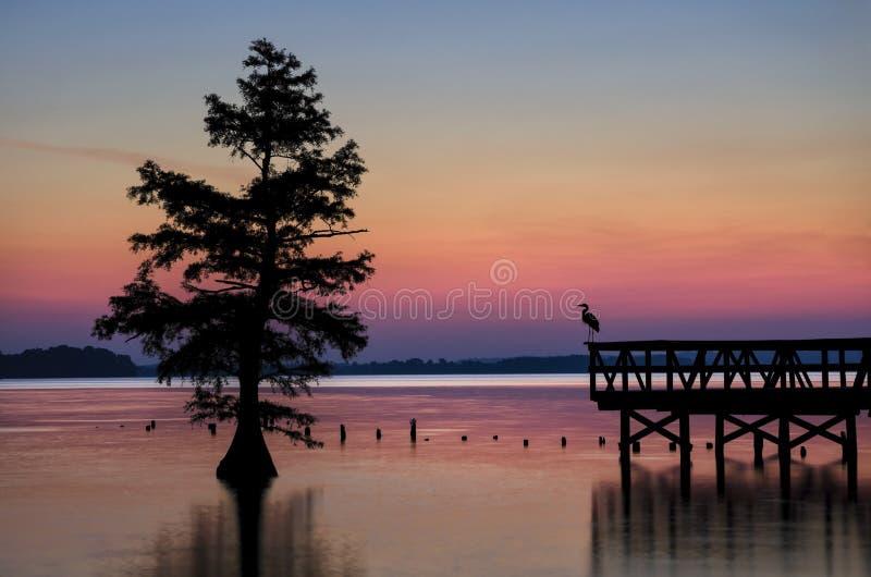 Reelfoot Tennessee stanu Jeziorny park obraz royalty free