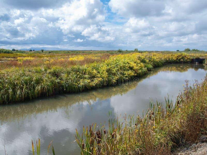 Refúgio Nacional de Vida Selvagem de Alamosa no Colorado imagem de stock royalty free