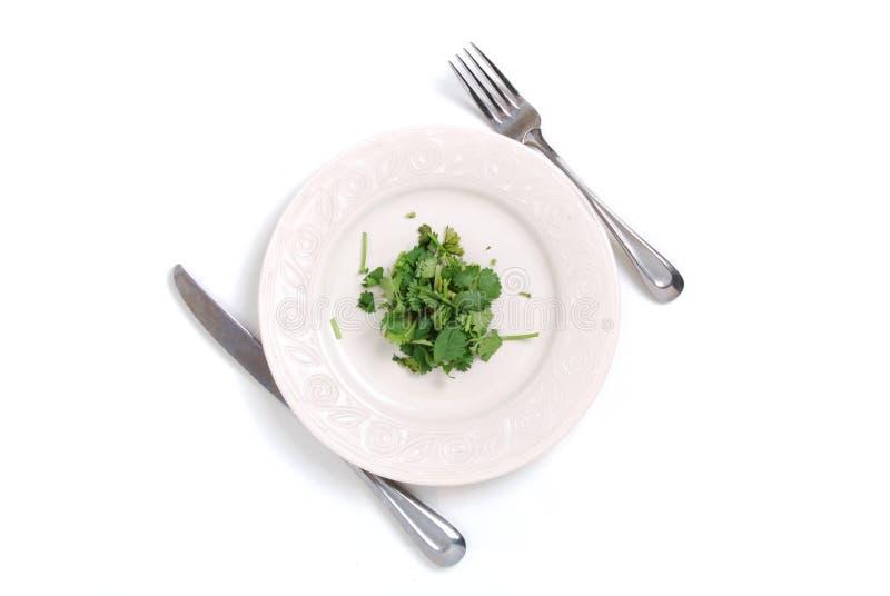 Refeição da dieta fotografia de stock royalty free