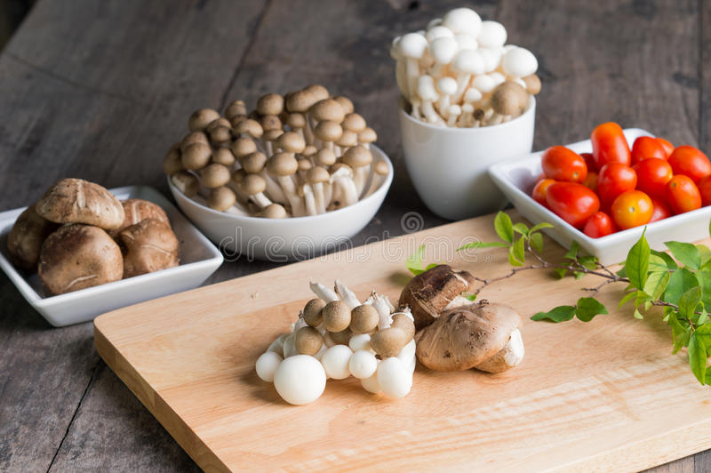 Refeição do cogumelo imagens de stock
