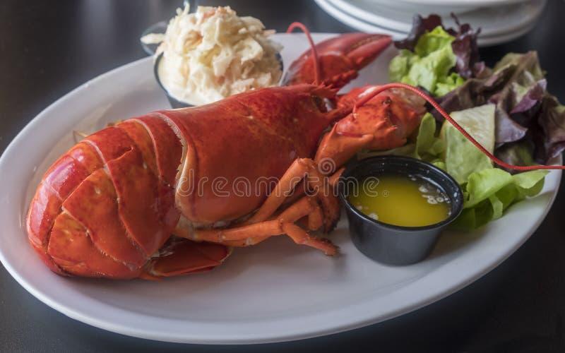 A refeição inteira da lagosta serviu em um restaurante fotos de stock