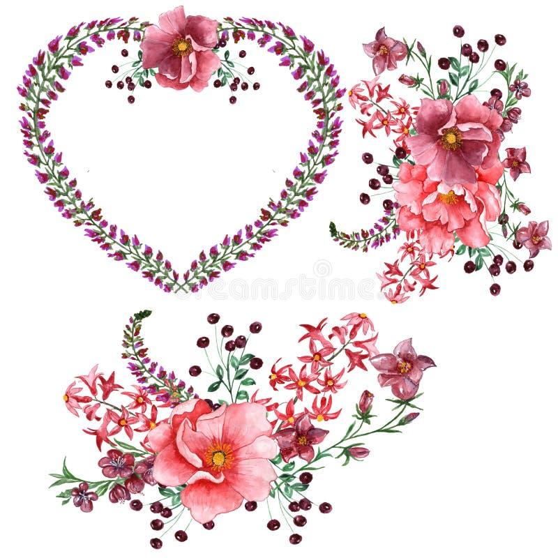 Refeições matinais e pétalas românticas das rosas da sagacidade do ramalhete da aquarela ilustração do vetor