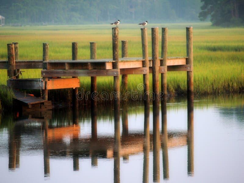 Refelcting Dock und Vögel lizenzfreie stockfotos