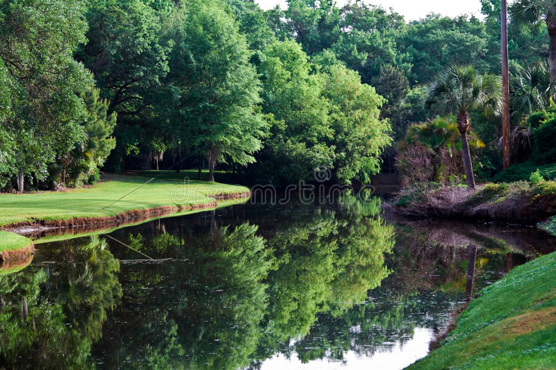 Download Refelction Pond stock photo. Image of mirrored, carolina - 5280950