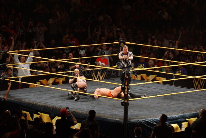 A referência aponta com ambas as mãos após o lutador que masculino de NXT Finn Balor seja fotos de stock