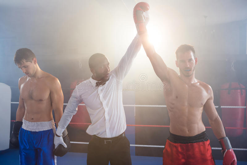 Referee lighting hand of winner in boxing ring. Referee lighting hand of winner standing with loser in boxing ring royalty free stock photos