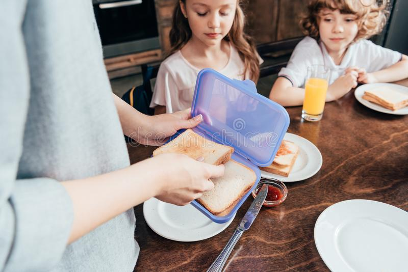 refezione dell'imballaggio della madre in scatola immagini stock libere da diritti
