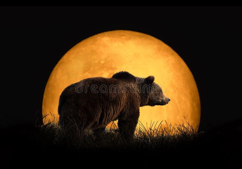 Refiera el fondo de la luna roja imagen de archivo