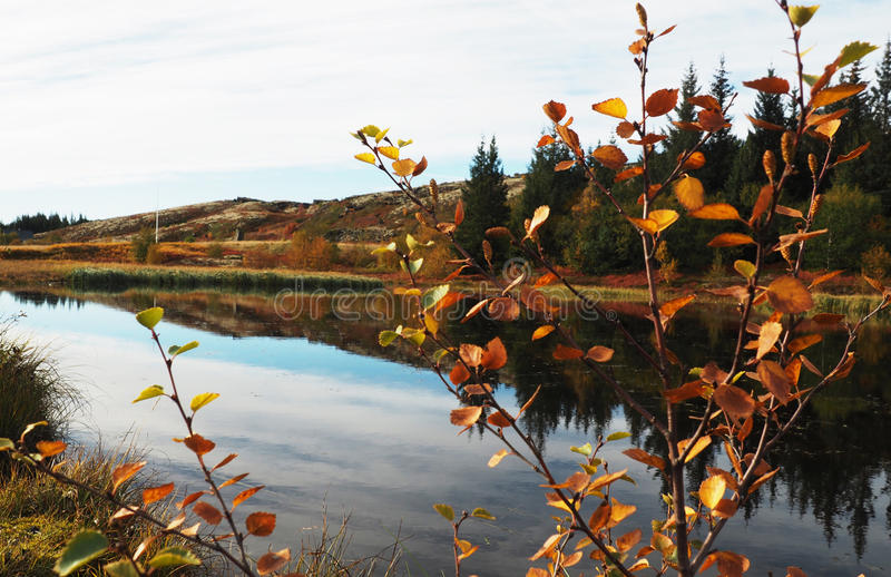 Reflected Autumn River royalty free stock images