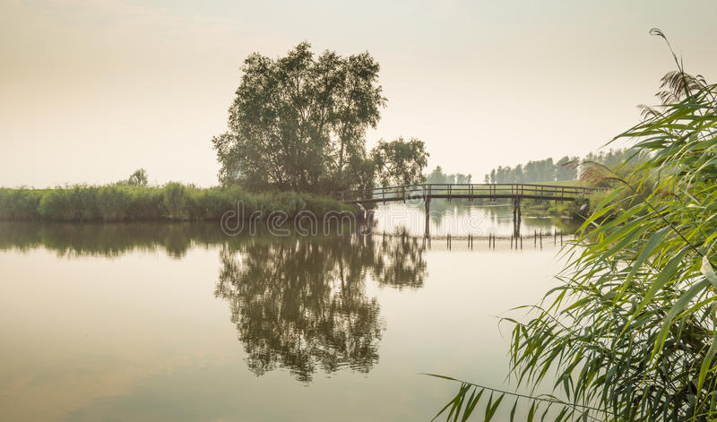 Reflected bridge at dusk. Reflection of a tree and a bridge at a mirror smooth water surface in the soft atmospheric light at the beginning of the evening royalty free stock photography