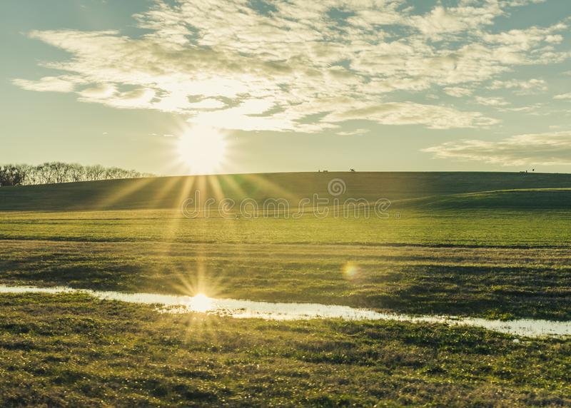 Reflected Sun Starburst on a Green Hill royalty free stock image