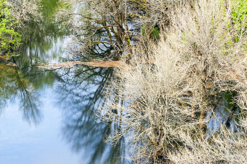 Reflecting spring flood waters. Spring flooding of the Columbia River, seen from above from a hiking trail in the Columbia River Gorge royalty free stock image