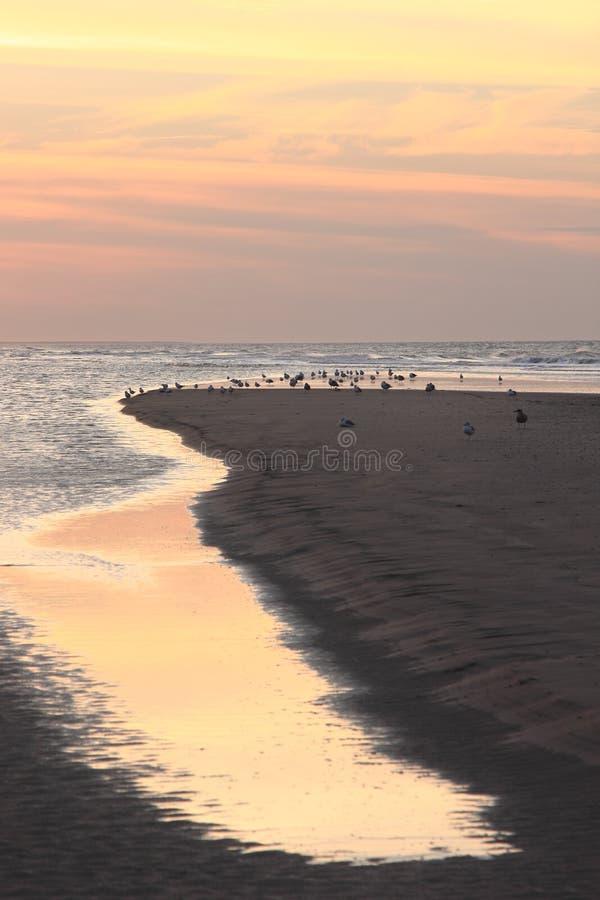 Reflecting sunset at Ameland beach, the Netherlands stock image