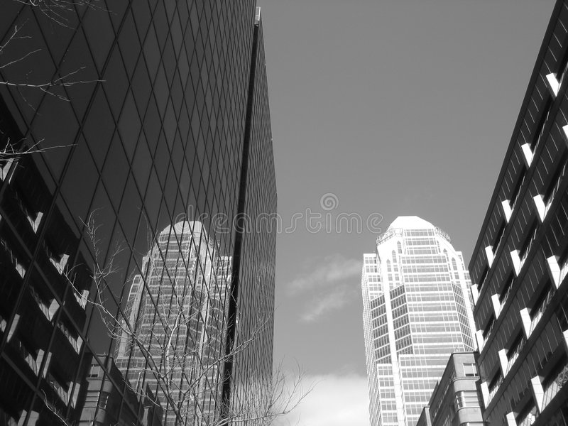 Download Reflection stock image. Image of corporations, offices, white - 1511