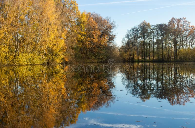 Reflection of autumn trees in water stock photo