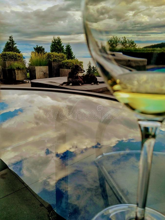 Dog laying by glass of wine on the table under the clouds stock photos