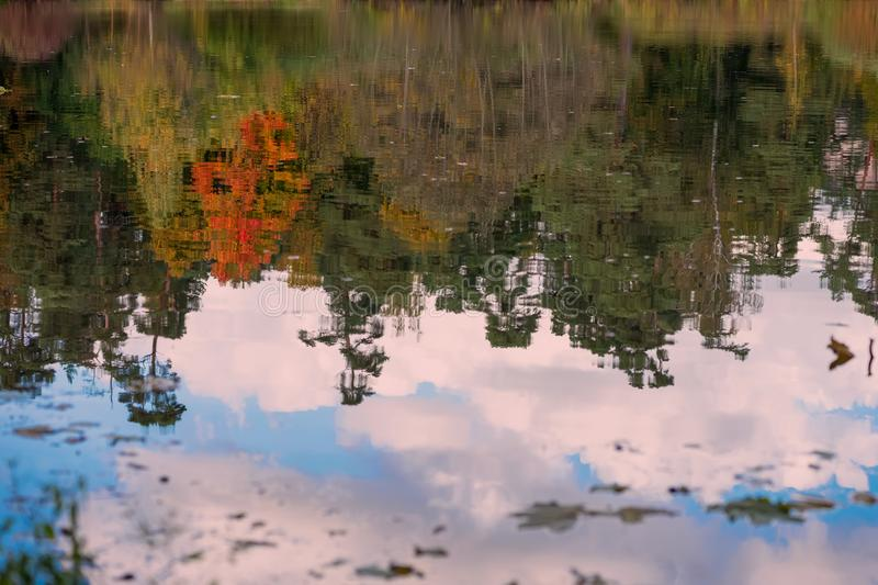 Reflection of the different scenic bright colorful autumn trees. Fall, landscape in the old park. Walk, mood, concept of. Nostalgia. Natural background stock photography