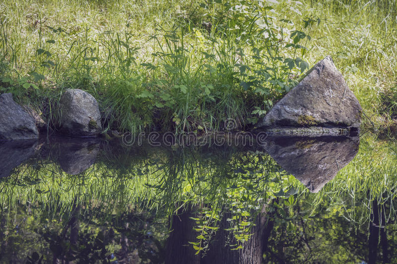 Reflection in forest creek a sunny summer day. Stones, trees and grass reflected in forest creek a sunny summer day stock images