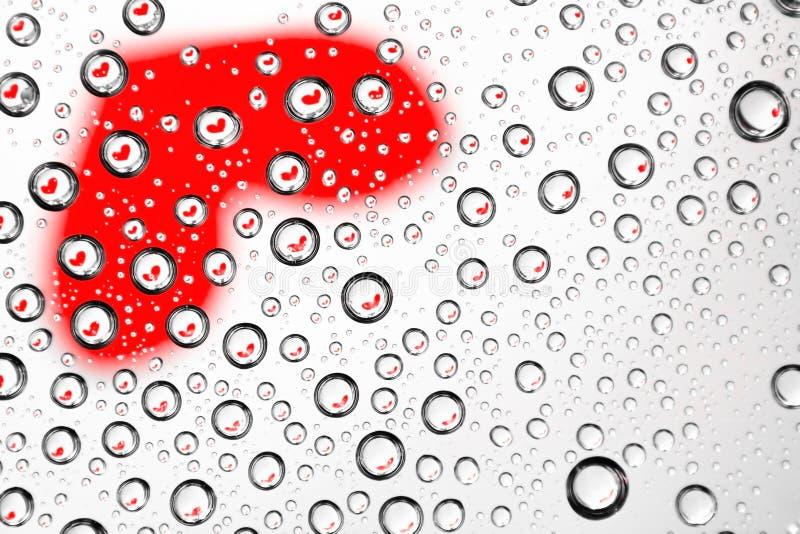 Reflection Heart Stock Photo