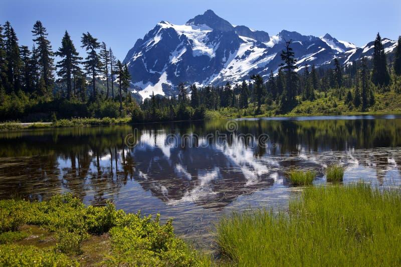 Reflection Lake Mount Shuksan Washington State. Reflection Lake Mount Shuksan Mount Baker Highway Snow Mountain Grass Trees Washington State Pacific Northwest royalty free stock image