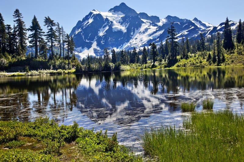 Reflection Lake Mount Shuksan Washington State. Reflection Lake Mount Shuksan Mount Baker Highway Snow Mountain Grass Trees Washington State Pacific Northwest royalty free stock photos