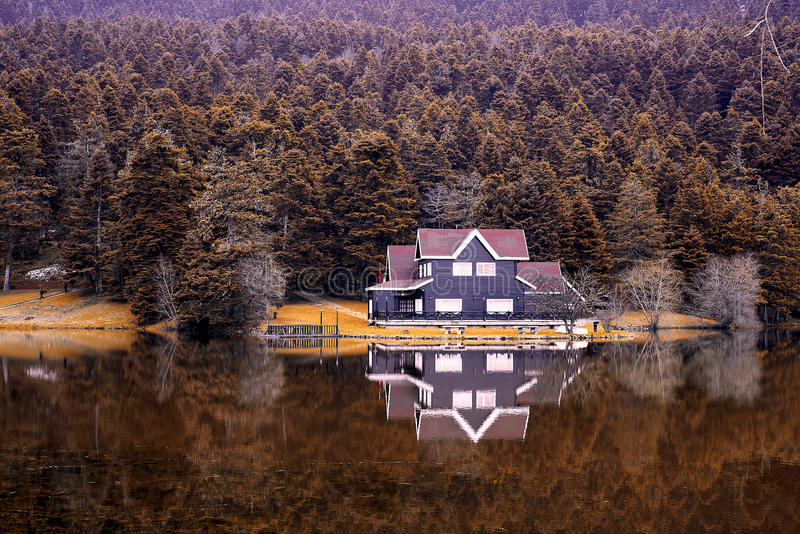 Reflection lake and trees in autumn royalty free stock images
