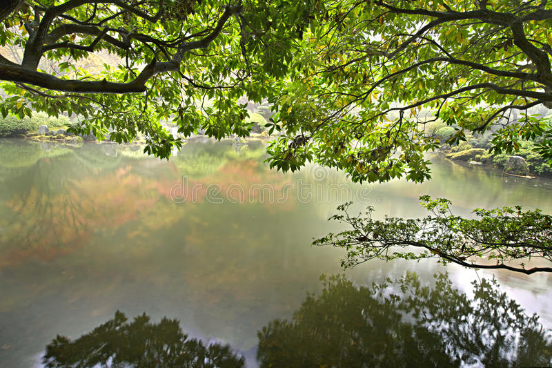 Download Reflection By The Pond In Japanese Garden Stock Image - Image: 16846933