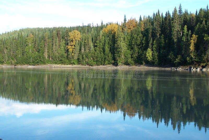 Download Reflection river στοκ εικόνα. εικόνα από δέντρα, τοπίο - 104989