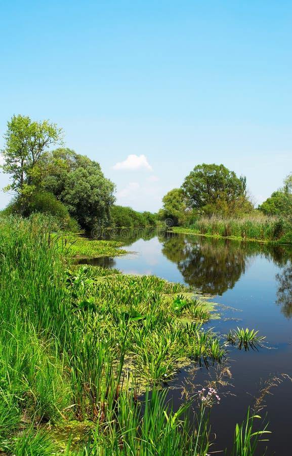 Reflection on river Zala stock image