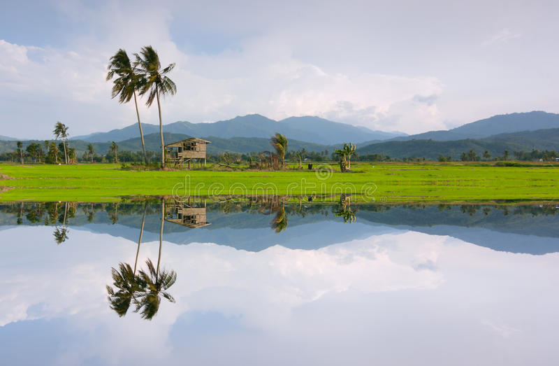 Reflection of a rural scenery in Kota Marudu, Sabah, East Malaysia. Borneo royalty free stock photos