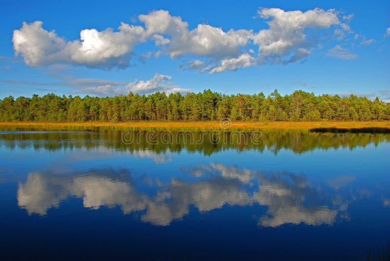 Reflection on still lake stock photos