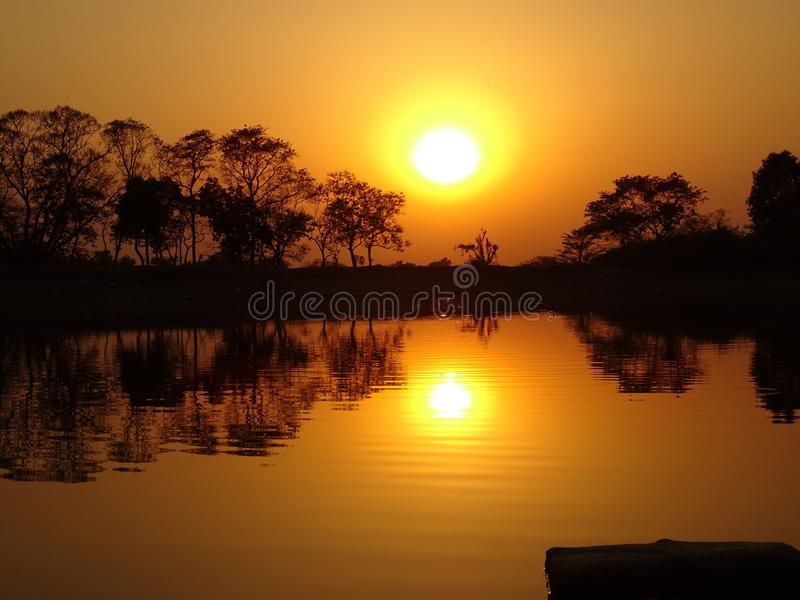 Reflection of sun and black silhouette trees fall on water in the evening time with the redness of sky. royalty free stock images