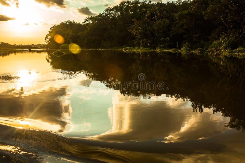 Reflection of the sun. At sunset in the Limoncocha lagoon in the Ecuadorian Amazon royalty free stock photos