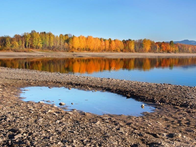 Reflection of trees in Liptovska Mara at autumn royalty free stock photography