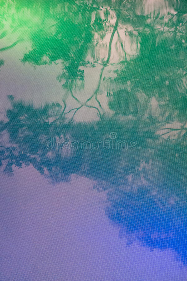Download Reflection Of Trees On A Pool Water Stock Photo - Image: 28836412