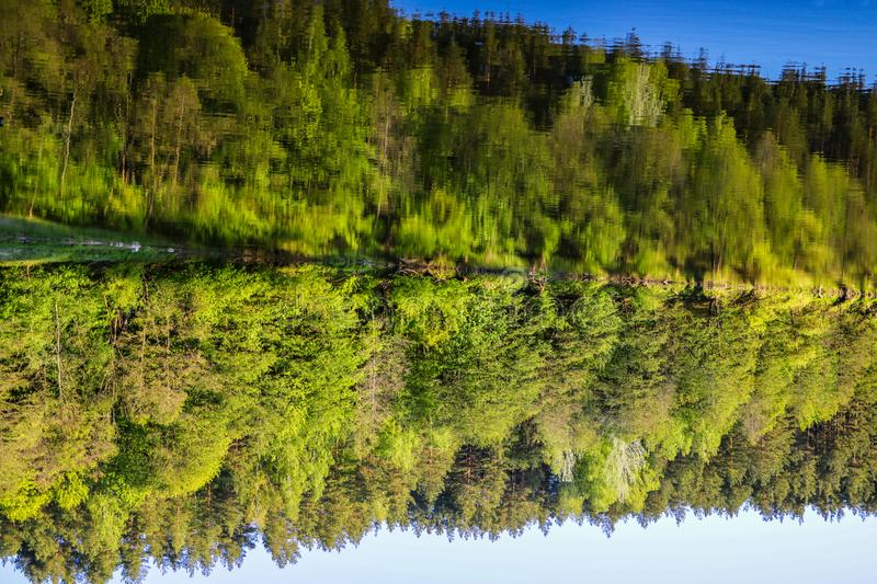 Reflection of trees and sky in the water, autumn, nature background royalty free stock photography